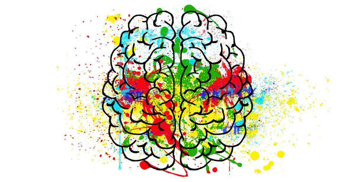 cerveau hypersensible